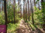 Borkowice, Bajkowa - zdjęcie 22